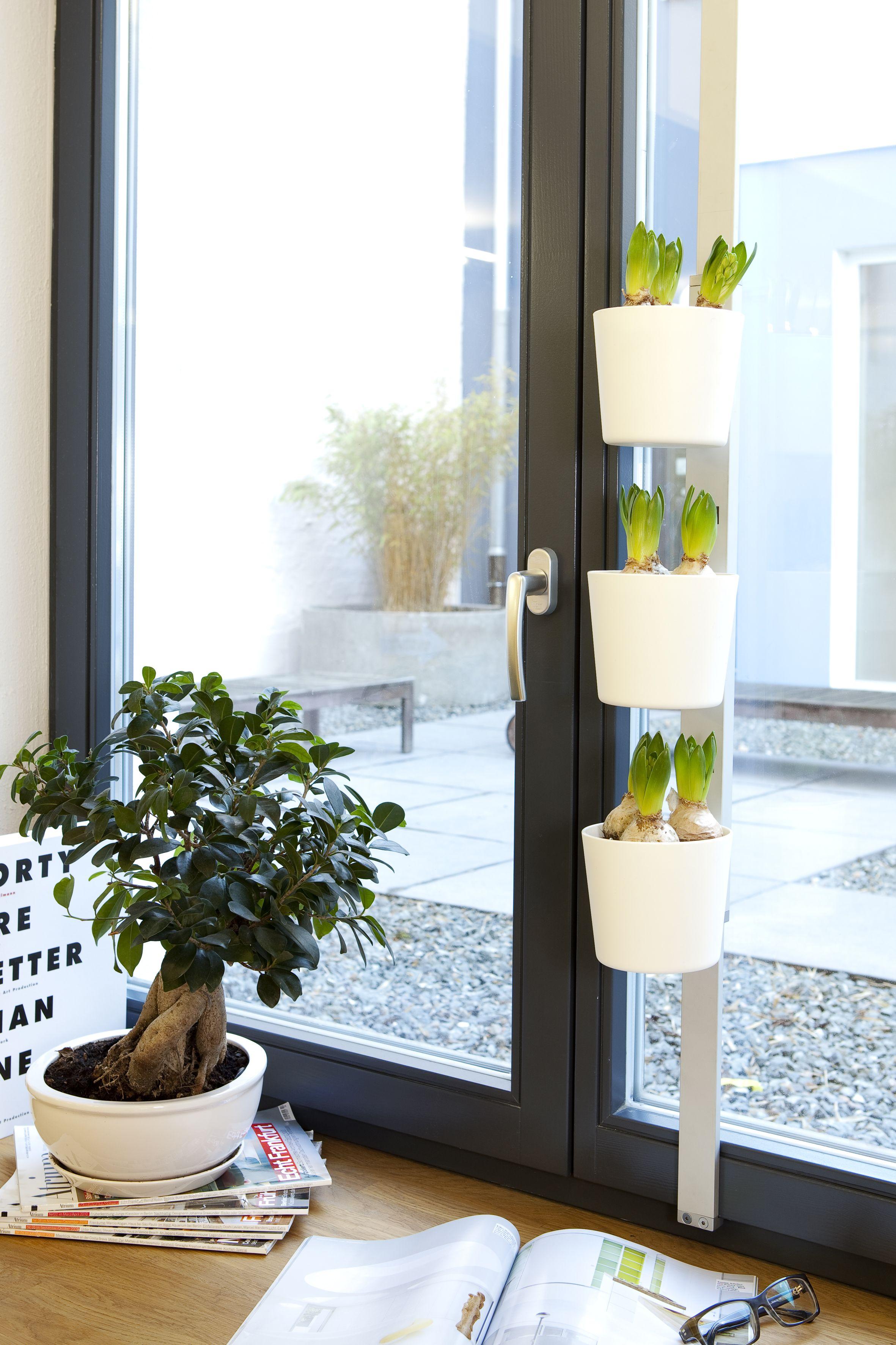 Design3000 Praktische Krauterleiter Mit Drei Topfen Und Teleskopstange Zum Einklemmen Krauterleiter Pflanzenleiter Blumentopf Weiss