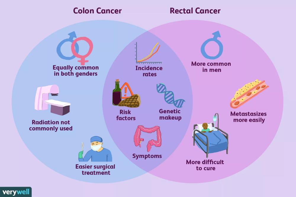 Pin On Cancer De Colon
