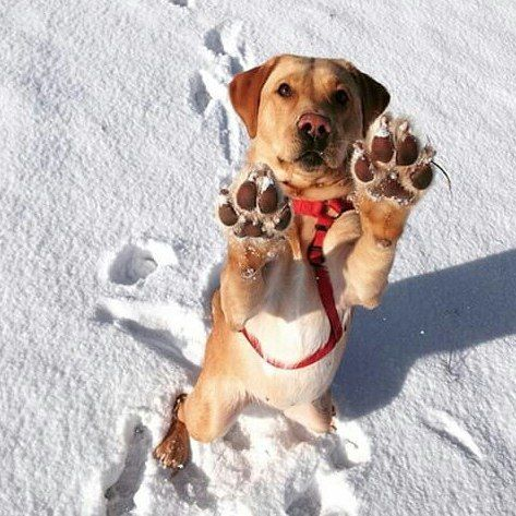 Give me a high five...