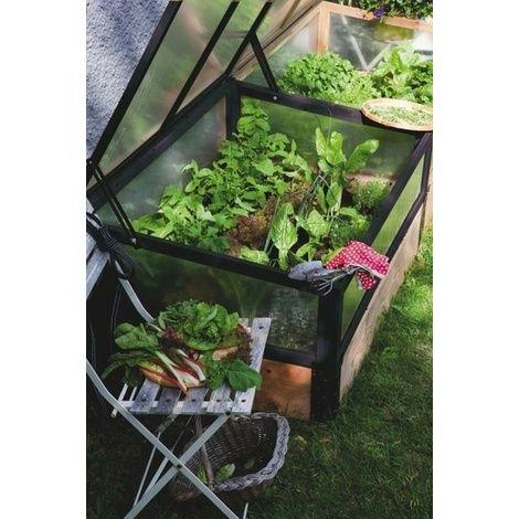 miniature greenhouse thingamabob
