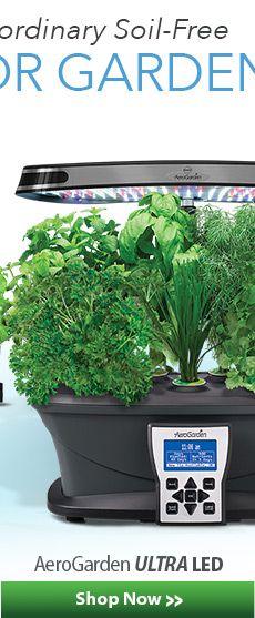 Shop Save On Aerogardens Seed Kits Grow Bulbs 400 x 300