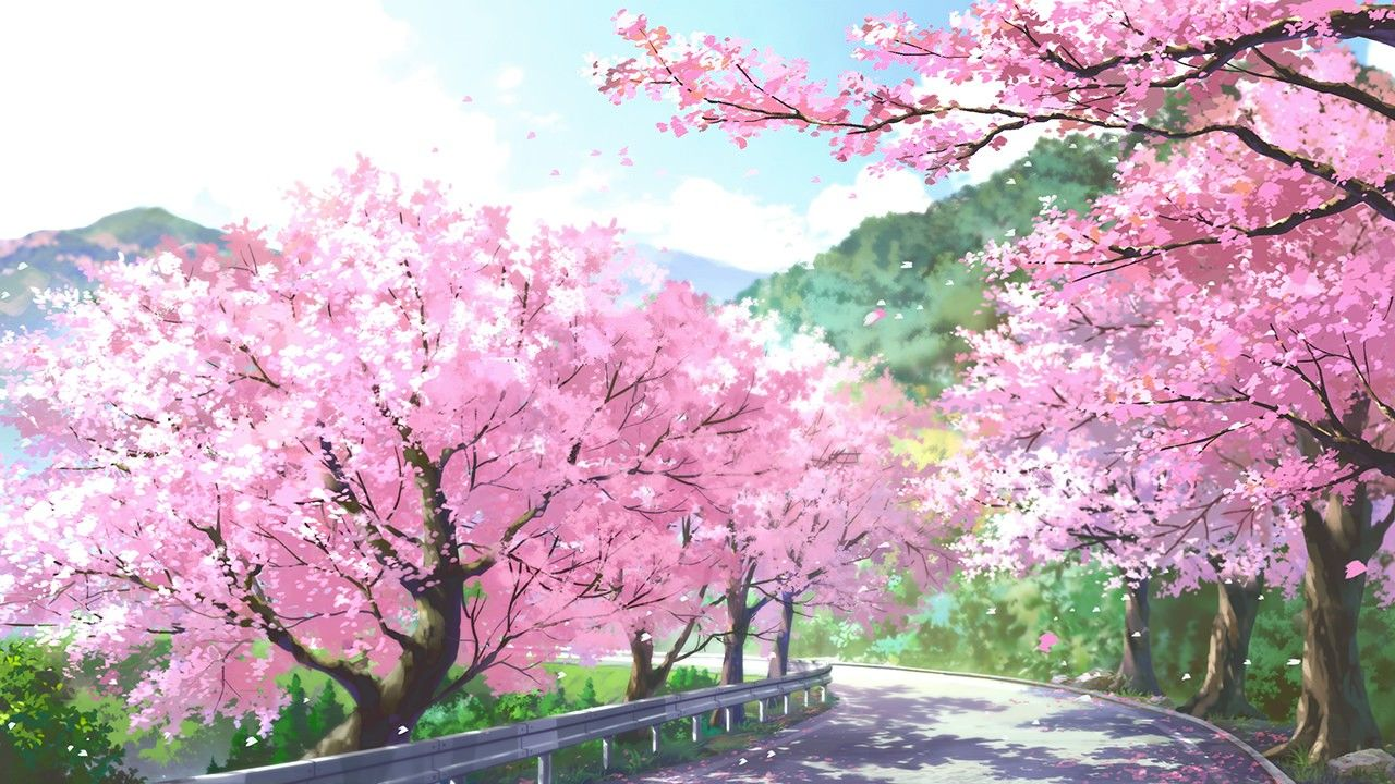 Anime Sky Wallpapers Art Image Nature View Beautiful Kurdishotaku Animeart Wallpaper Cherryblossom Pemandangan Anime Latar Belakang Pemandangan