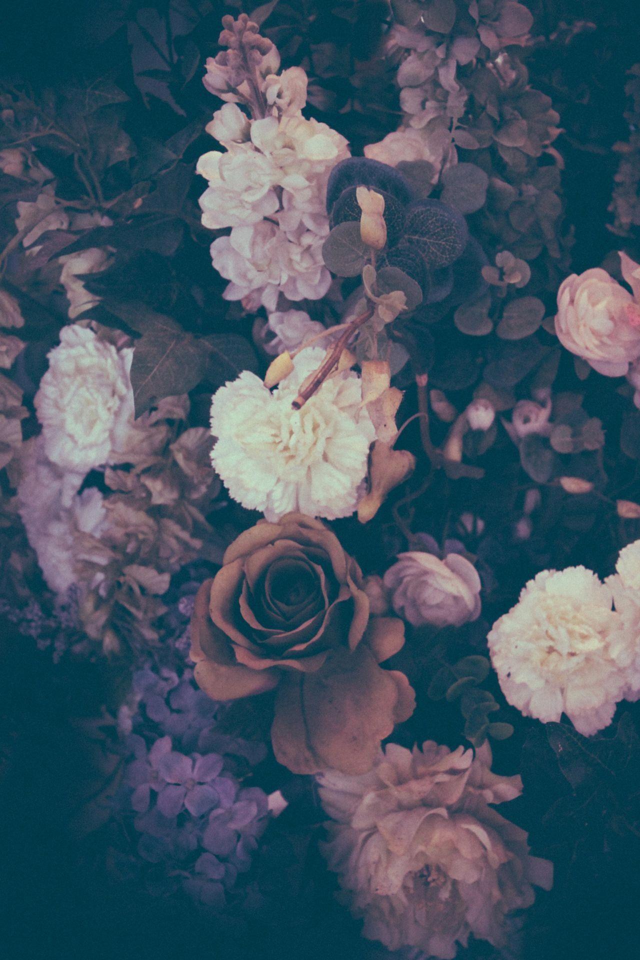astheticwallpaperiphonebackgrounds Vintage flower