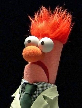Image result for muppet beaker