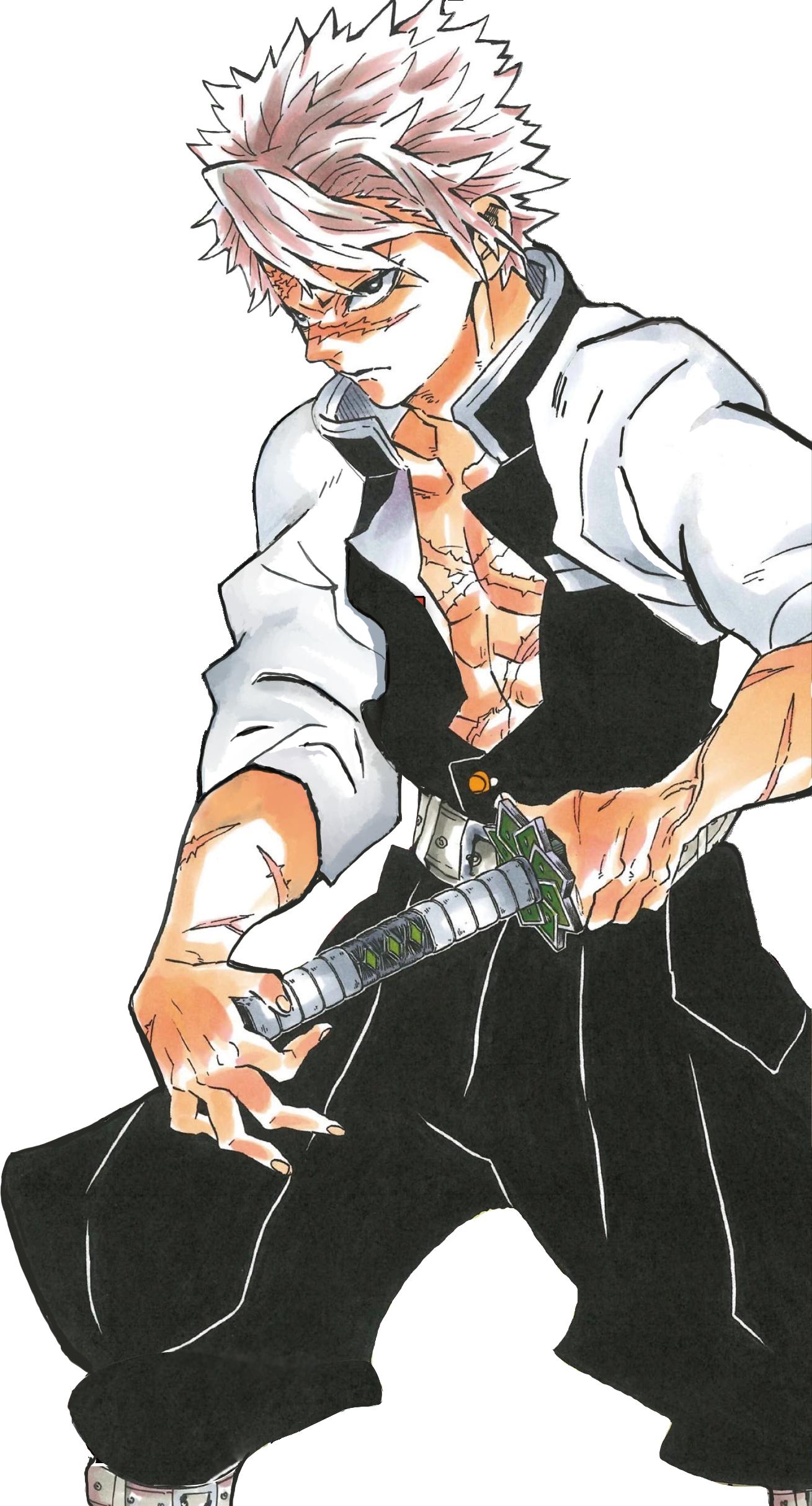Sanemi Shinazugawa Kimetsu No Yaiba Wikia Fandom Powered By Wikia Anime Demon Slayer Anime Anime