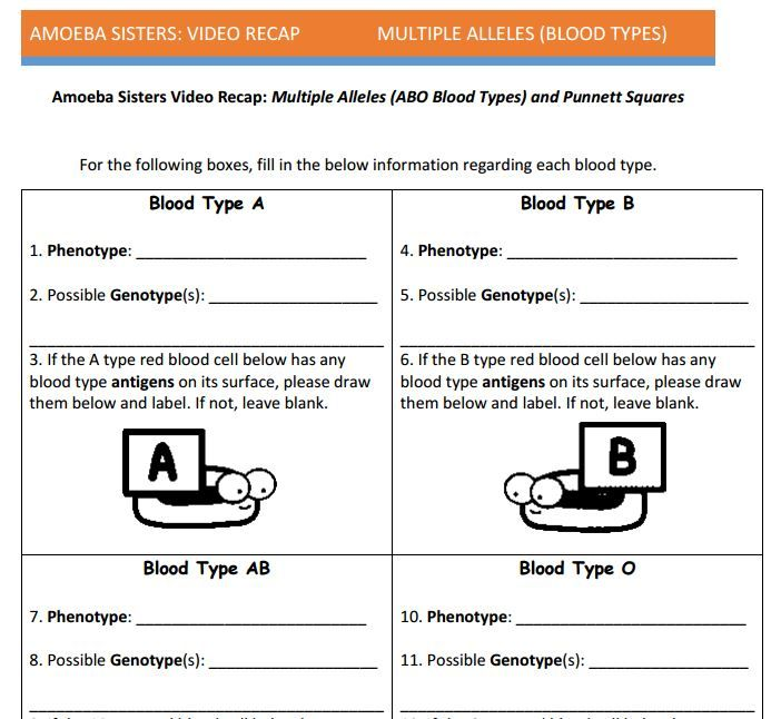 Multiple Allele And Punnett Squares Handout Made By The Amoeba Sisters Click To Visit Websit Persuasive Writing Prompts Genetics Activities Persuasive Writing
