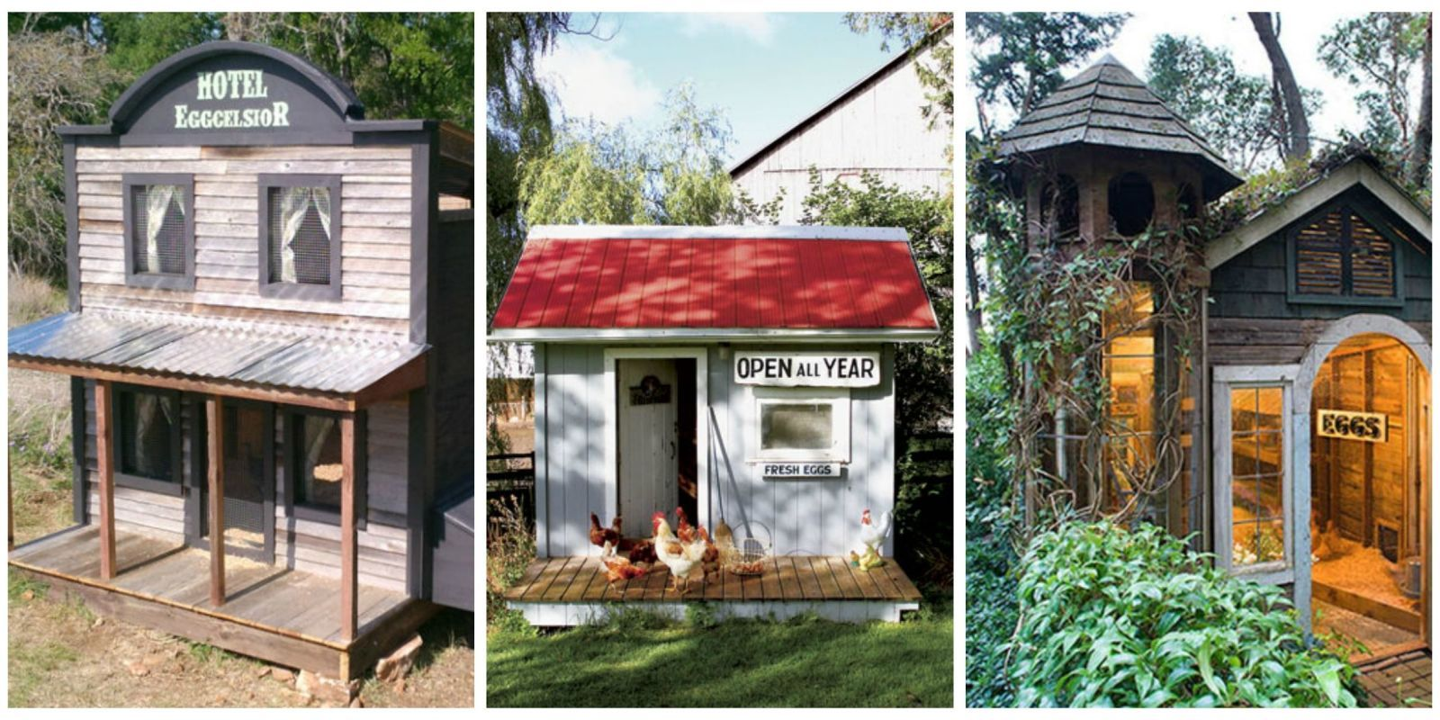 13 Outrageous Chicken Coop Designs | Chicken coop designs, Coops and ...