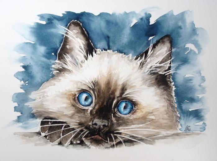 Aquarelles Animaux Peinture Chat Illustration De Chat Et