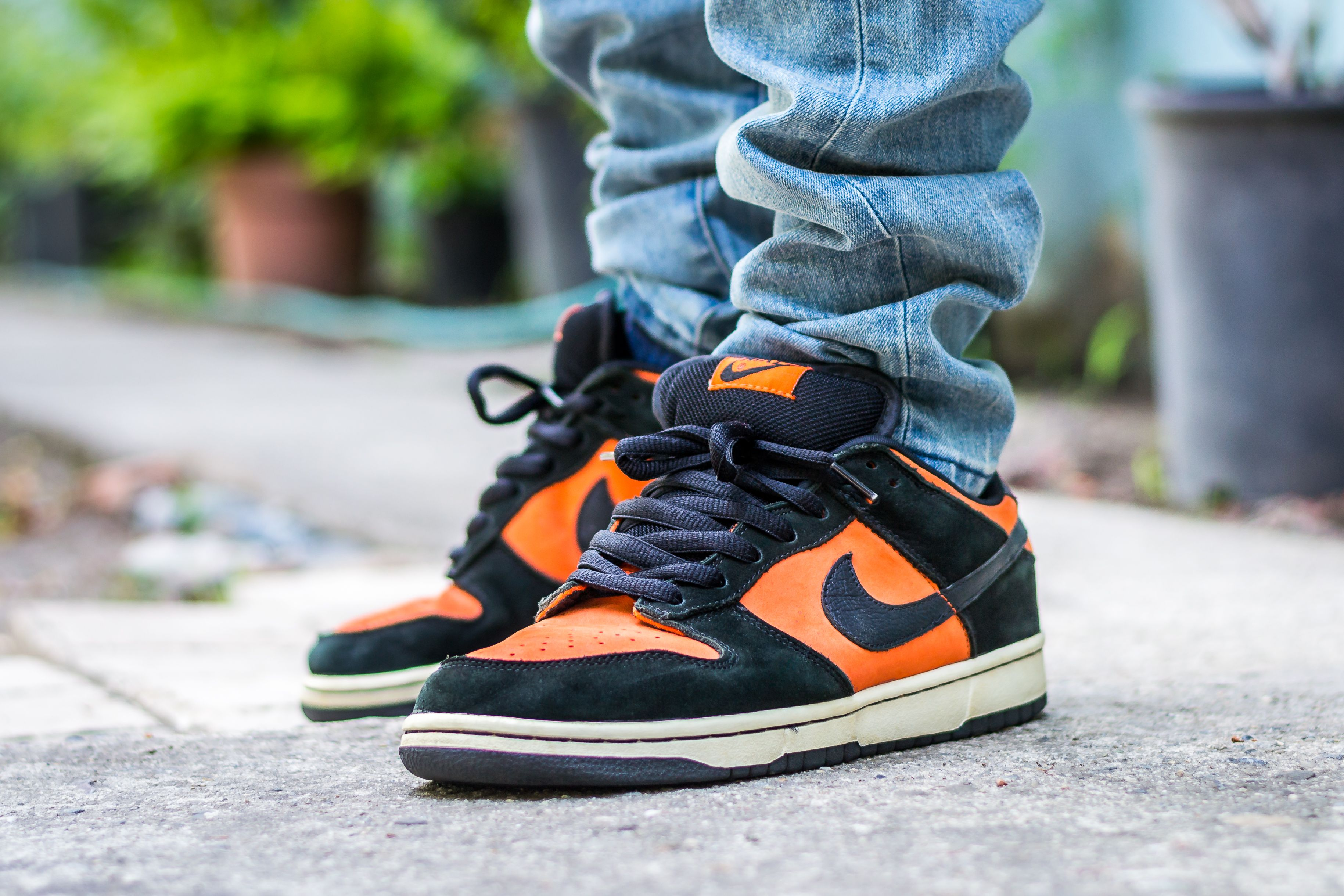 Nike Dunk Low SB Flash On Feet Sneaker Review | DS