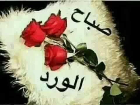 صباح الخير حبيبي نواعم