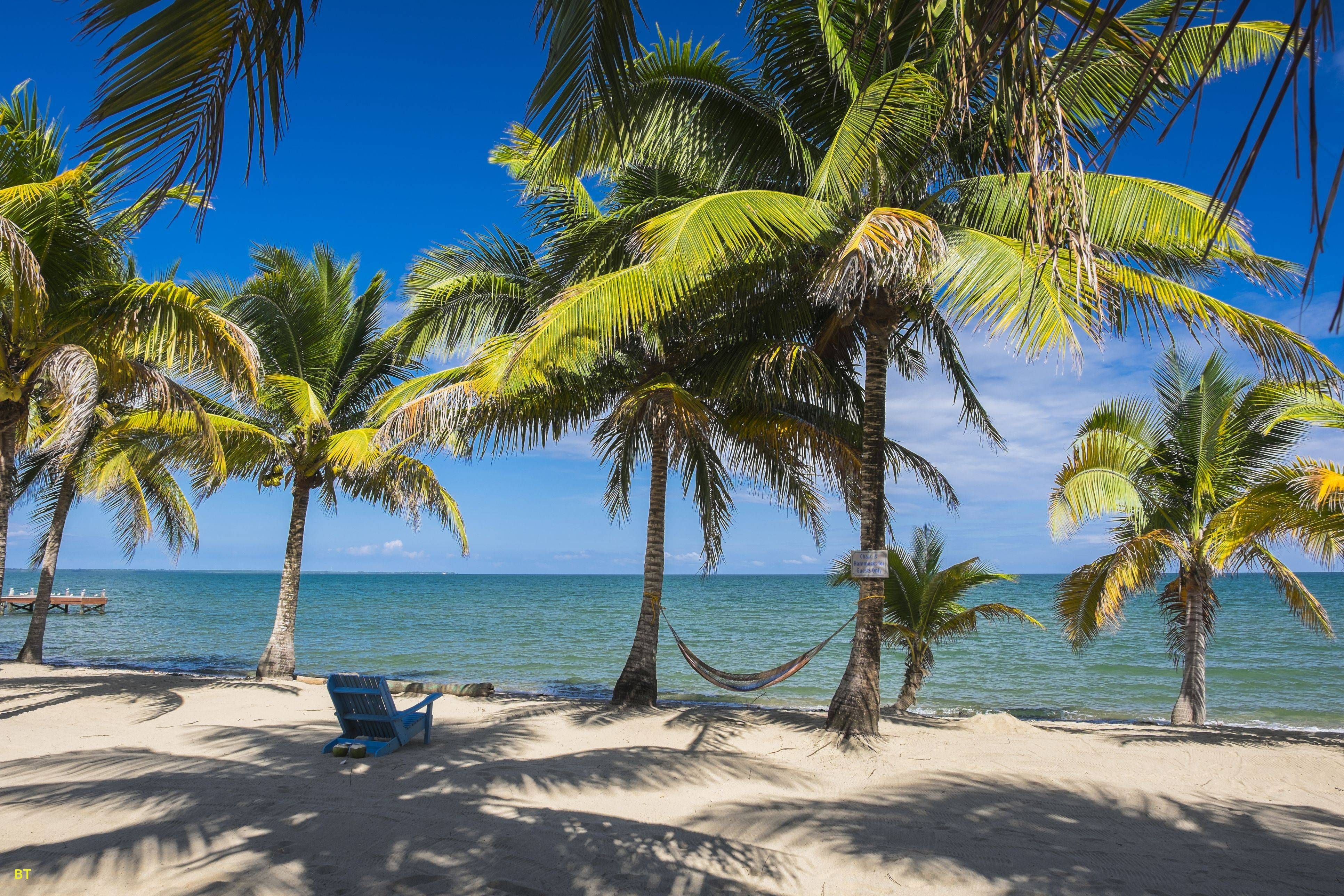 Awesome Best Places In Florida To Visit In December Best Island Vacation Island Vacation Island Travel