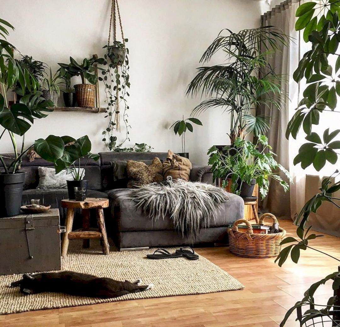 15 Beautiful Living Room With Hanging Plants Ideas In