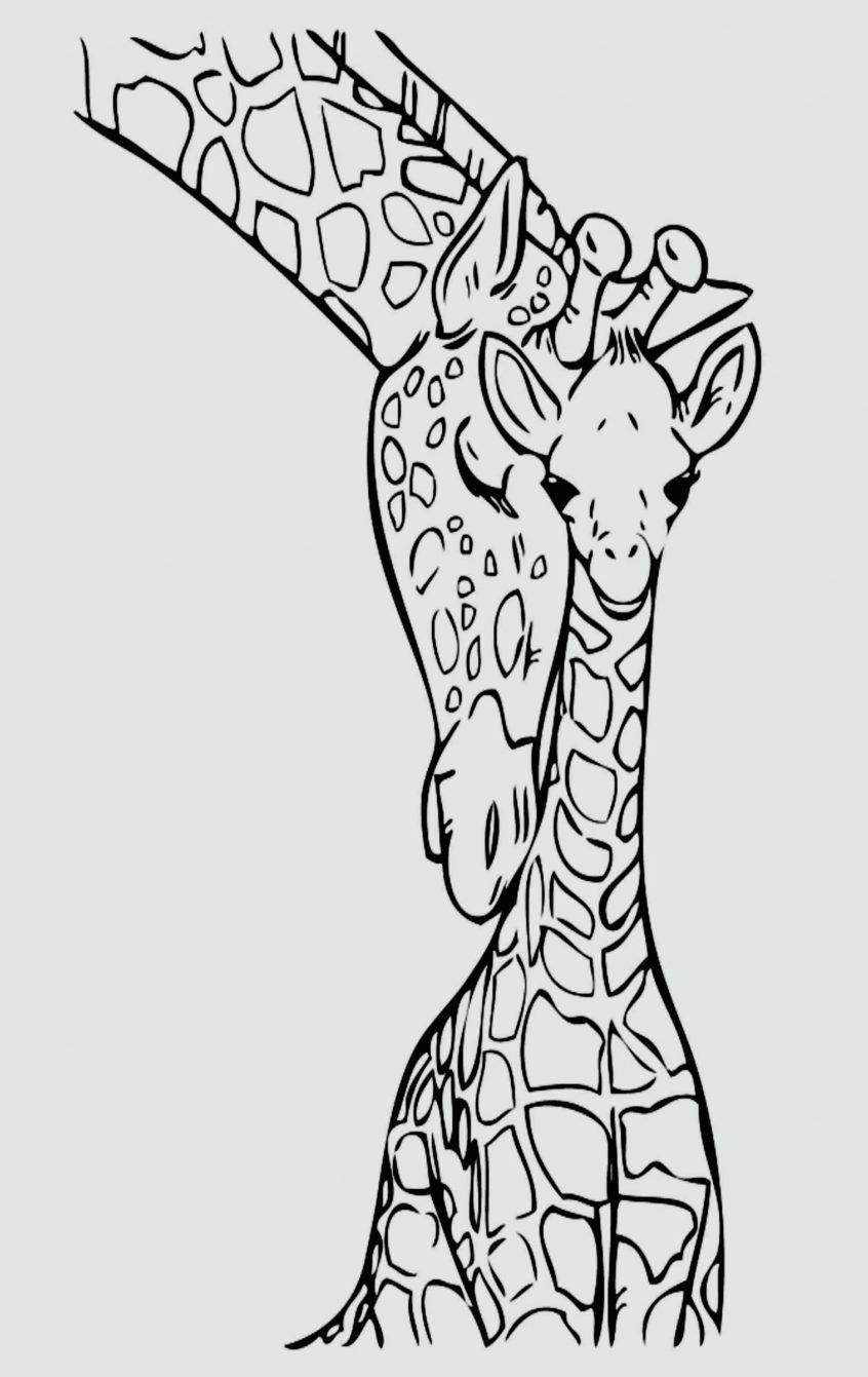 Wild Turkey Coloring Pages Best Of Jungle Printable Coloring Pages Giraffe Animal Colouring Kostenlose Ausmalbilder Malvorlagen Tiere Giraffenzeichnung