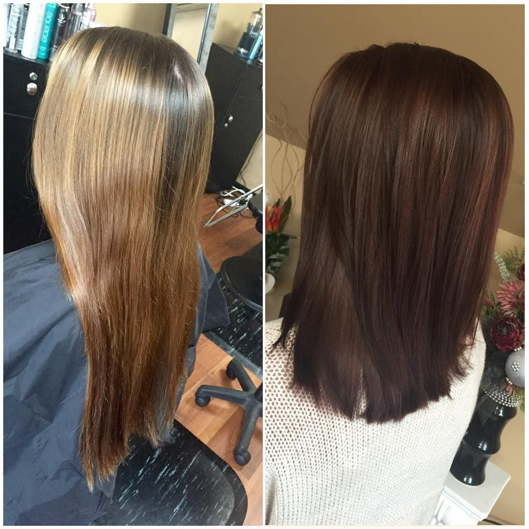 Love The Rich Chocolate Color Color In 2019 Hair