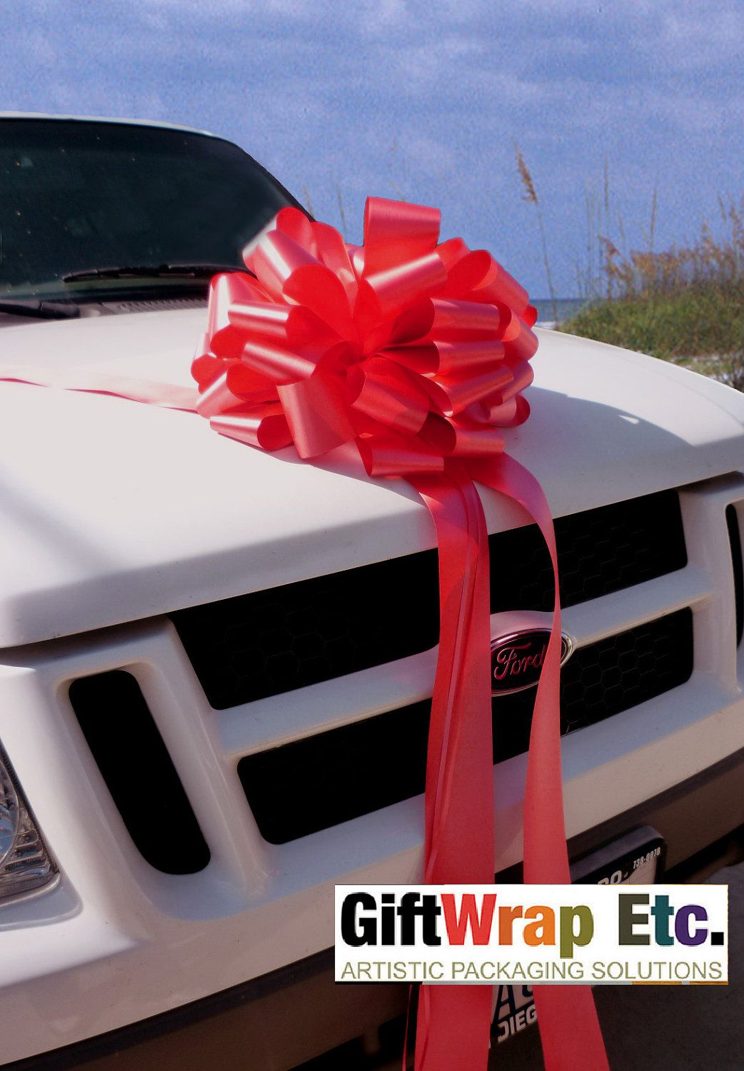 Extra Large 16 Bows Red Car Gift Bow Wedding Party Graduation ...