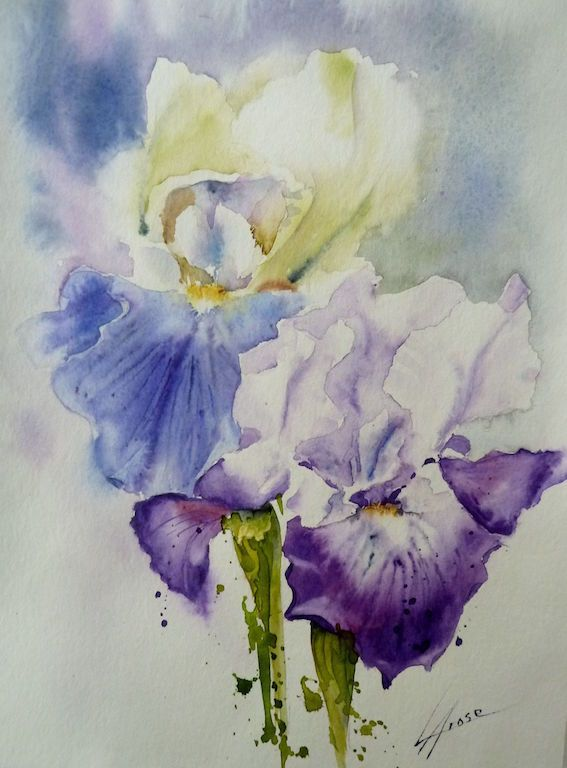 Aquarelle Iris 30x40 1 Contemporary Art Artists Flower