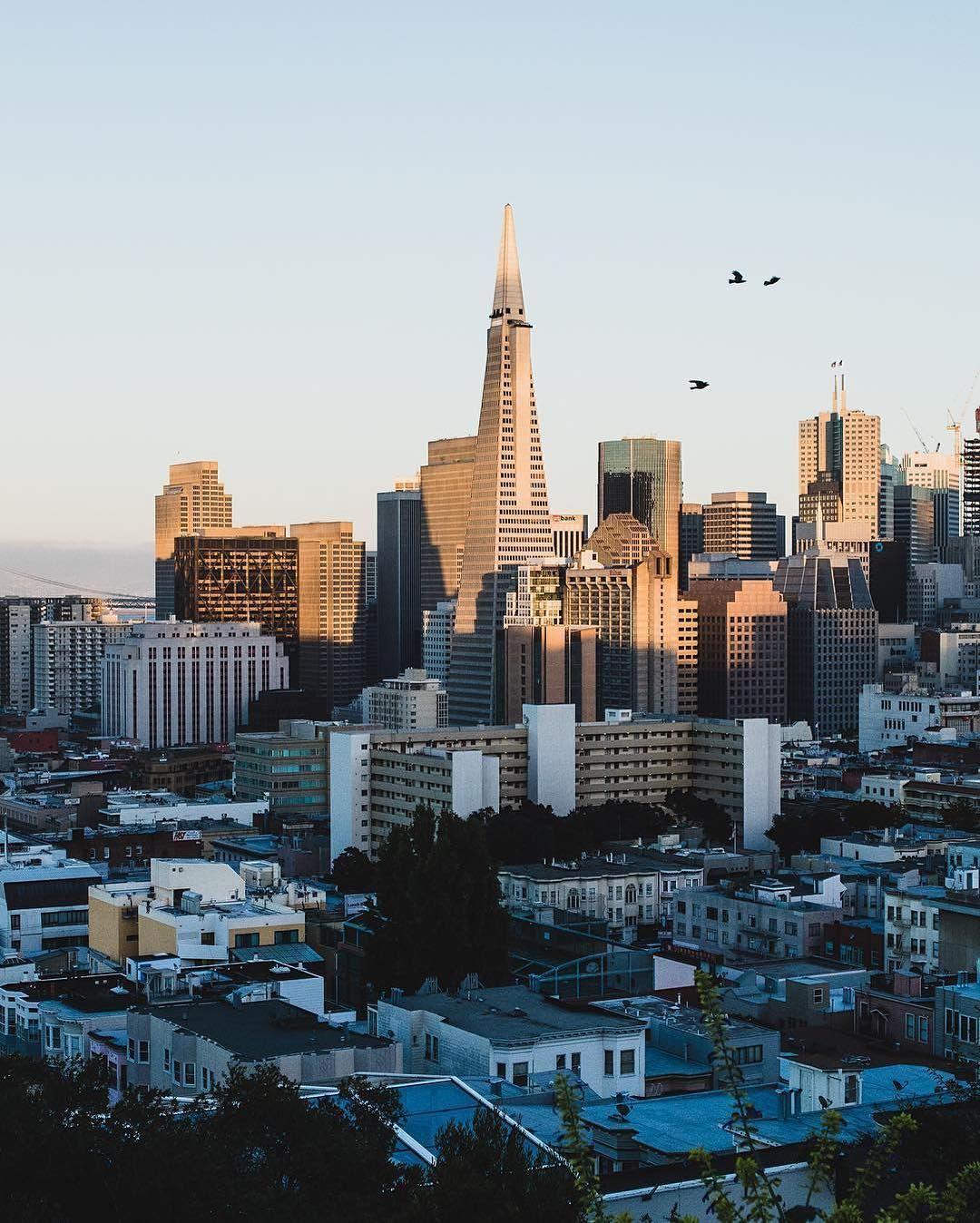 San Francisco (@sf_insta) • Photos et vidéos Instagram