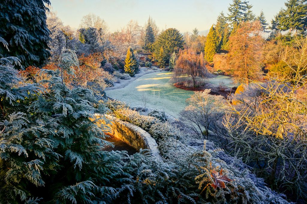 https://flic.kr/p/CsagRN | Queen Elizabeth Park with Snow Makeup (雪化粧 ゆきげしょう) | Queen Elizabeth Park with white frosty coating in cold winter, in Vancouver BC Canada.  Camera Information:  Model: Sony NEX-6 Lens: Sony 16-50mm f/3.5-5.6 OSS Alpha E-mount Retractable Zoom (SELP1650).