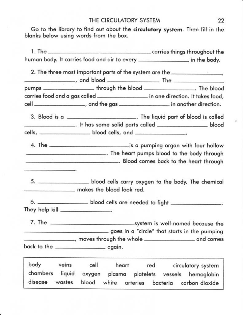 circulatory system worksheet answers terri perryman worksheet the