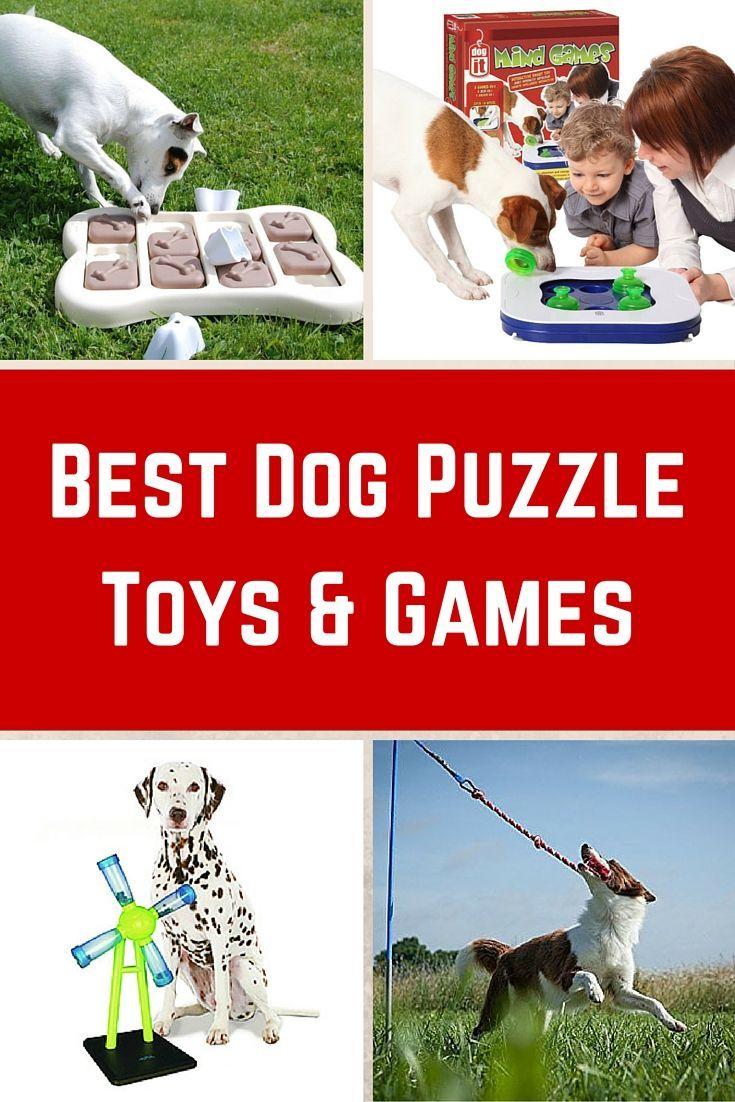 Best Dog Puzzle Toys Dog Games Dog Puzzles Dog Games Dog Toys