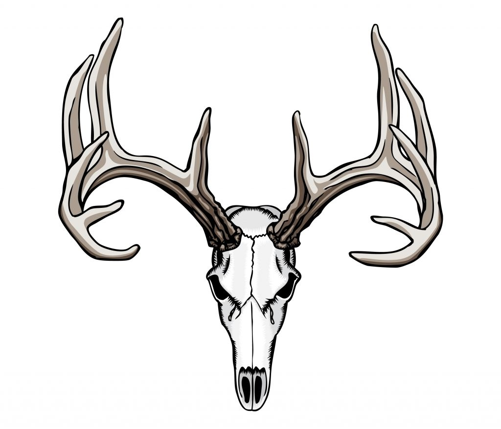 Tribal Deer Antler Tattoos 1000 Ideas About Deer Skull Tattoos On ..