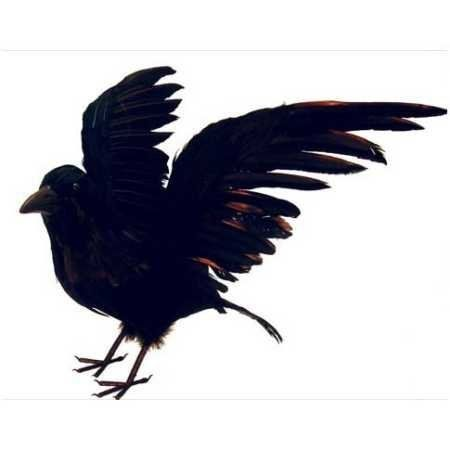 Artificial Large Life Size Black Feather Flying Crow For Halloween Decorating By Inspired By Nature Http Crow Nature Inspiration Halloween Porch Decorations