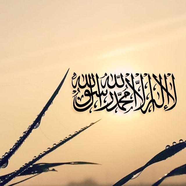 لا إله إلا الله محمد رسول الله Muslim Love Quotes Islamic Quotes Wallpaper Quotes