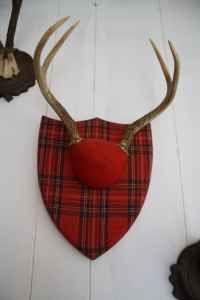 Craigslist Crushes Going Stag 10 13 11 Holiday Decor Christmas Tree Skirt Christmas Tree