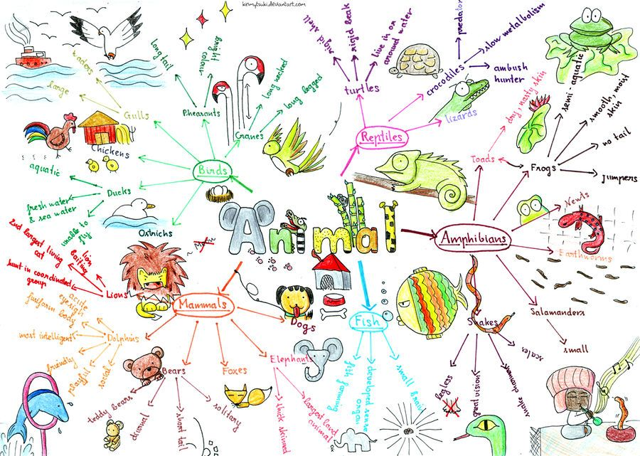 mind mapping Google Search Mind map examples, Mind map