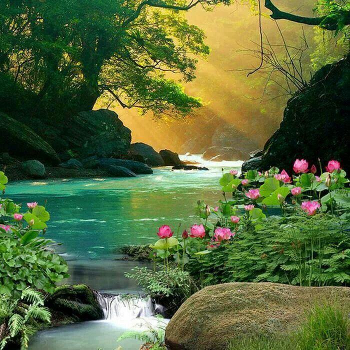 Beautiful Nature Image: Beautiful Landscapes, Nature, Nature