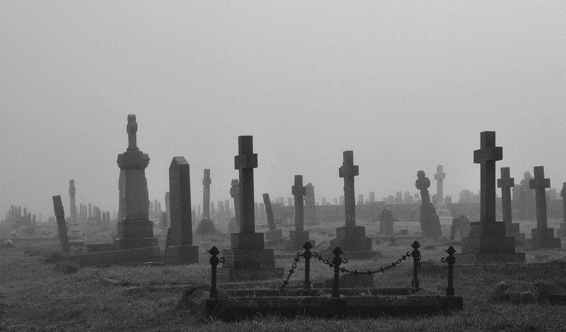 Gothic Foggy Cheshire