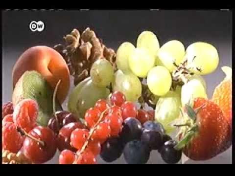 SOBRE VEGETARIANISMO DW 2015( Es posible vivir sin carne?) - YouTube