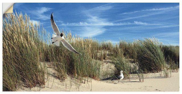 Photo of Artland Wandfolie »S. Herppich: Möwe und Seeschwalbe« online kaufen | OTTO