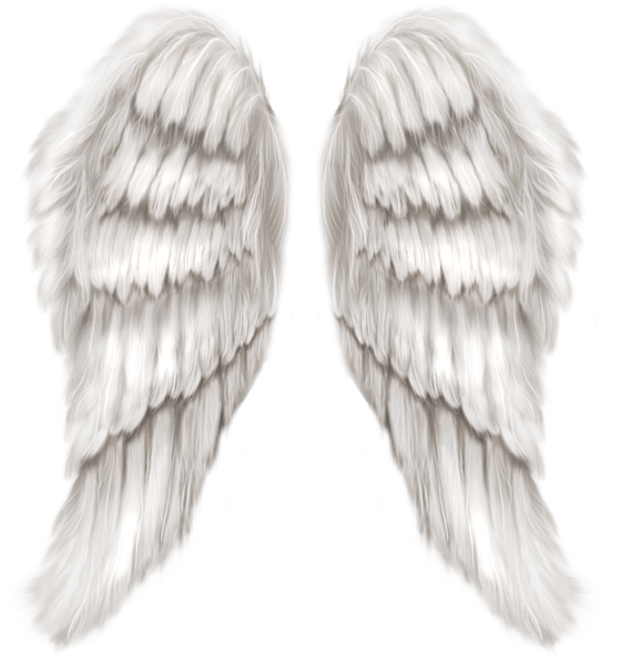 White Angel Wings Transparent Png Clip Art Image Angel Wings Pictures White Angel Wings Angel Wings Tattoo