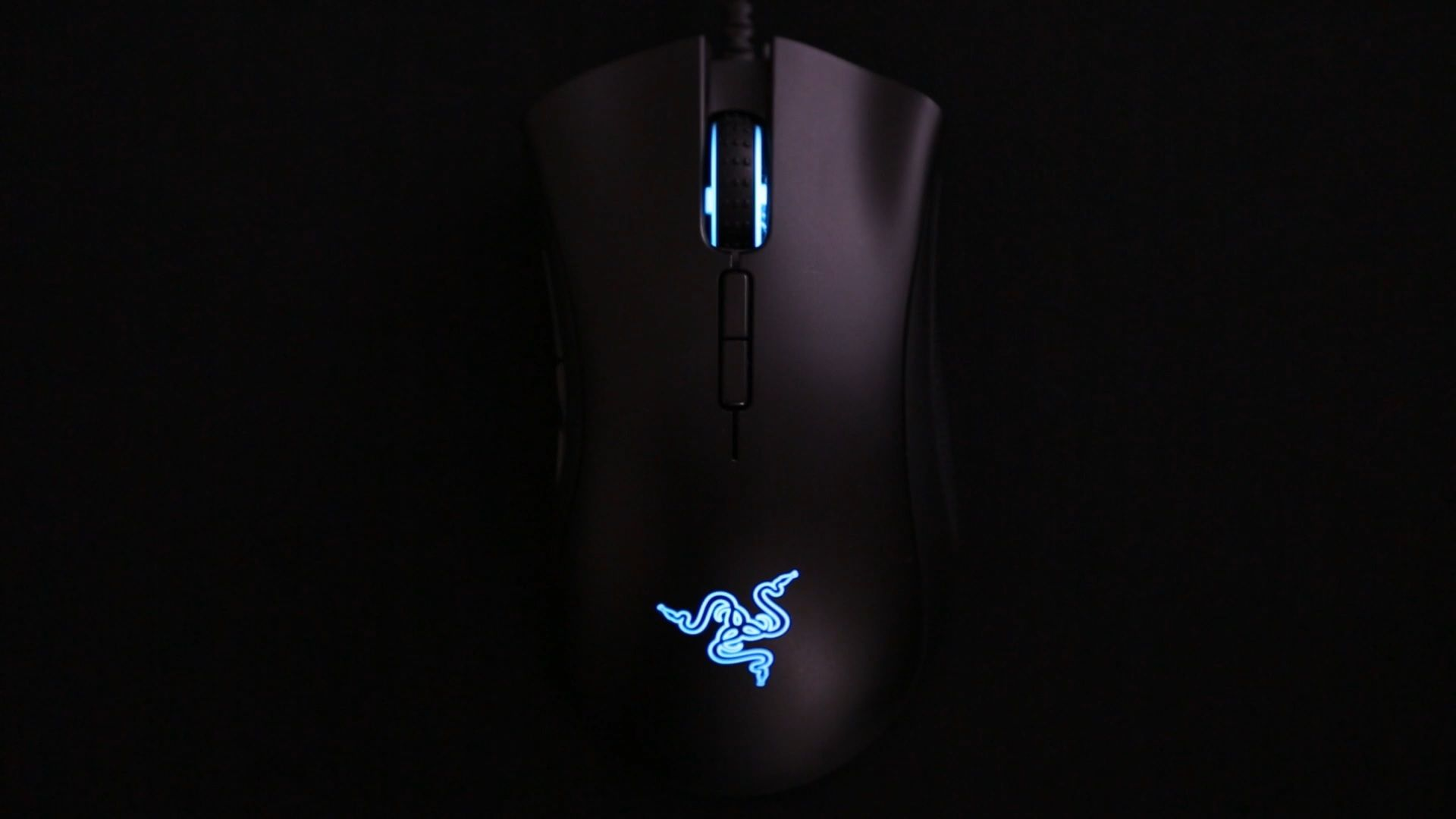 RGB cycle effect of the Razer DeathAdder Elite | Gaming mice