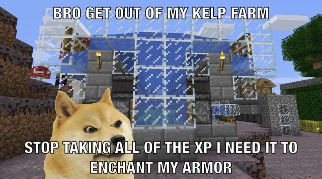 Meme Doge Minecraft Memes Doge Wow Meme