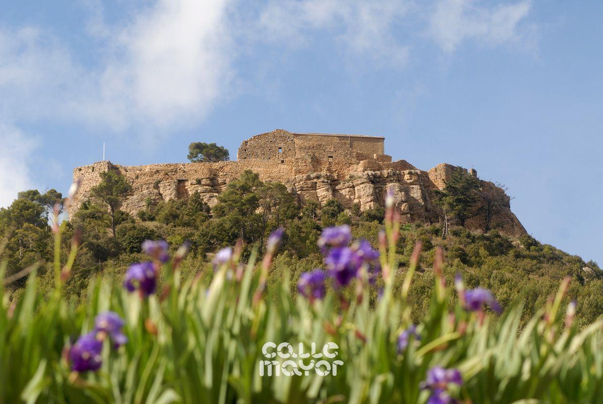 Castillo de Monjardín - Villamayor de Monjardín - Tierra Estella - Revista Calle Mayor
