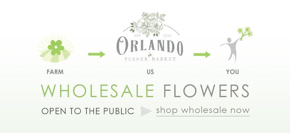 Orlando Flower Market In 2020 Wholesale Flowers Flower Market Flowers