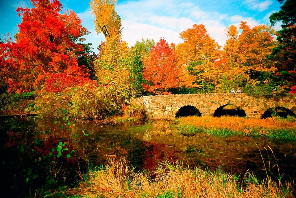 National Park Mont Saint Bruno Places To Visit Quebec Pinterest Quebec Park And