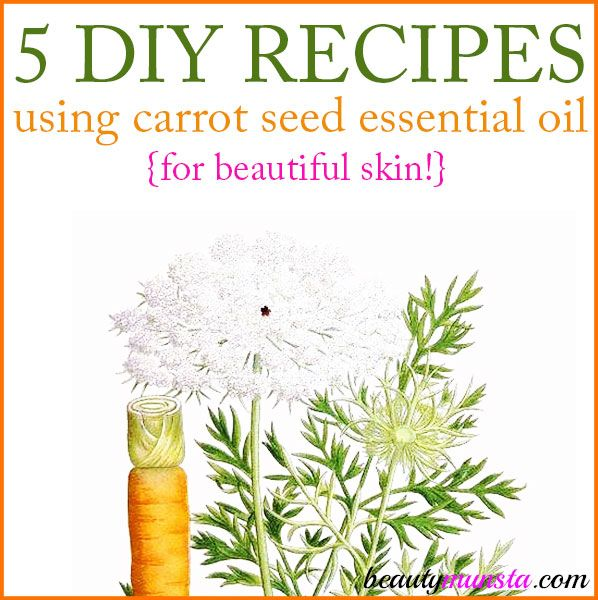 5 Diy Carrot Seed Essential Oil Recipes For Skin With Images