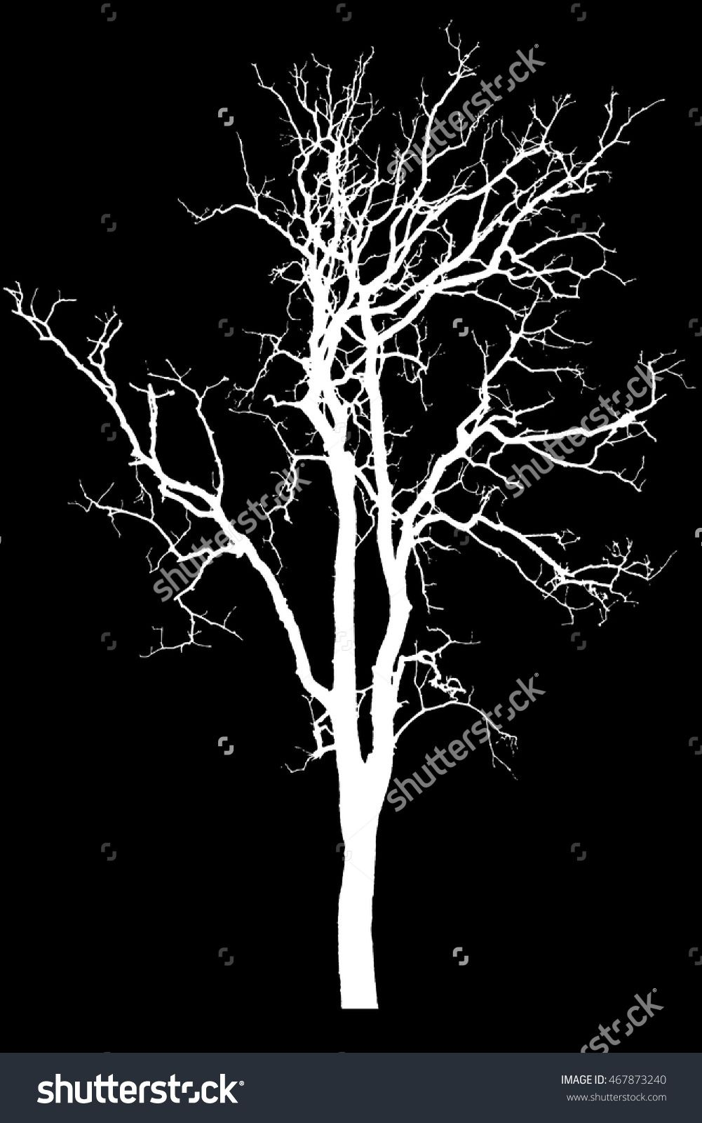 Silhouette Tree Isolated On Black Background With Clipping Path Tree Dry Dead Silhouette White Black Background Painting Landscape Tattoo Tree Silhouette