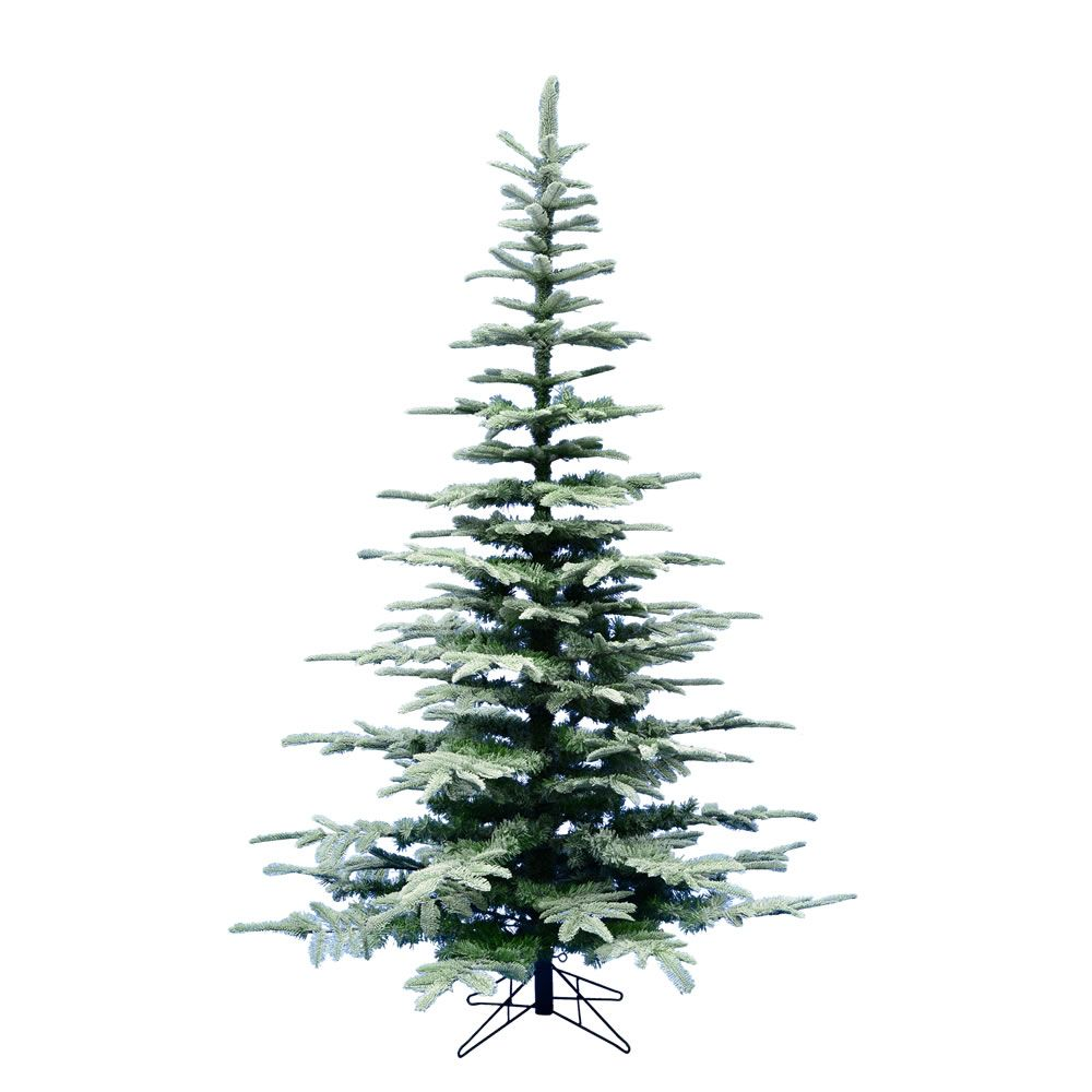 Vickerman 6 X 49 Frosted Ardwell Spruce 695 Tips Artificial Christmas Tree White Artificial Christmas Tree Spruce Christmas Tree