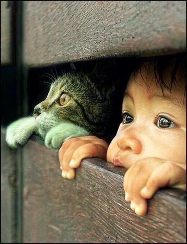 If We Could See The World Through The Eyes Of A Child, We Would See The Magic In Everything #cool #child #quote #RT