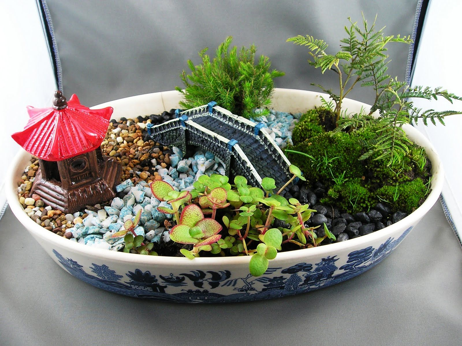 This Dish Garden Looks Like An Outside Replication Includes Pepples Looks Like Trees And Includes A Bridge Dish Garden Succulents Indoor Miniature Garden