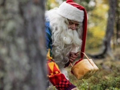 Lapland's nature is unique and the landscape changes constantly. In the autumn, people (including Santa) pick bilberries, lingonberries and cloudberries for the winter.