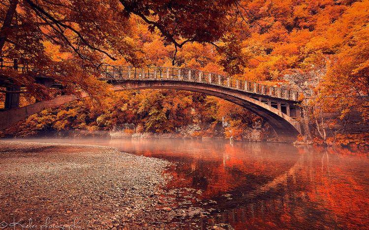 Пейзажи золотой осени: 20 ярких фотографий — Российское ...