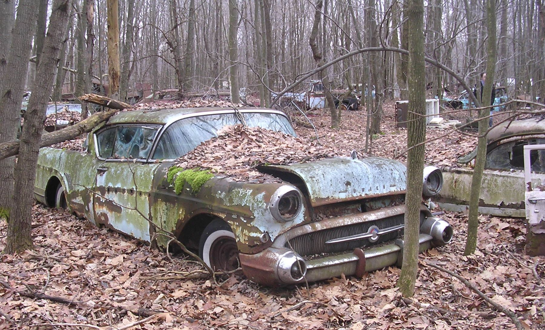 Open Diff – Is the American junkyard doomed? | Police cars ...