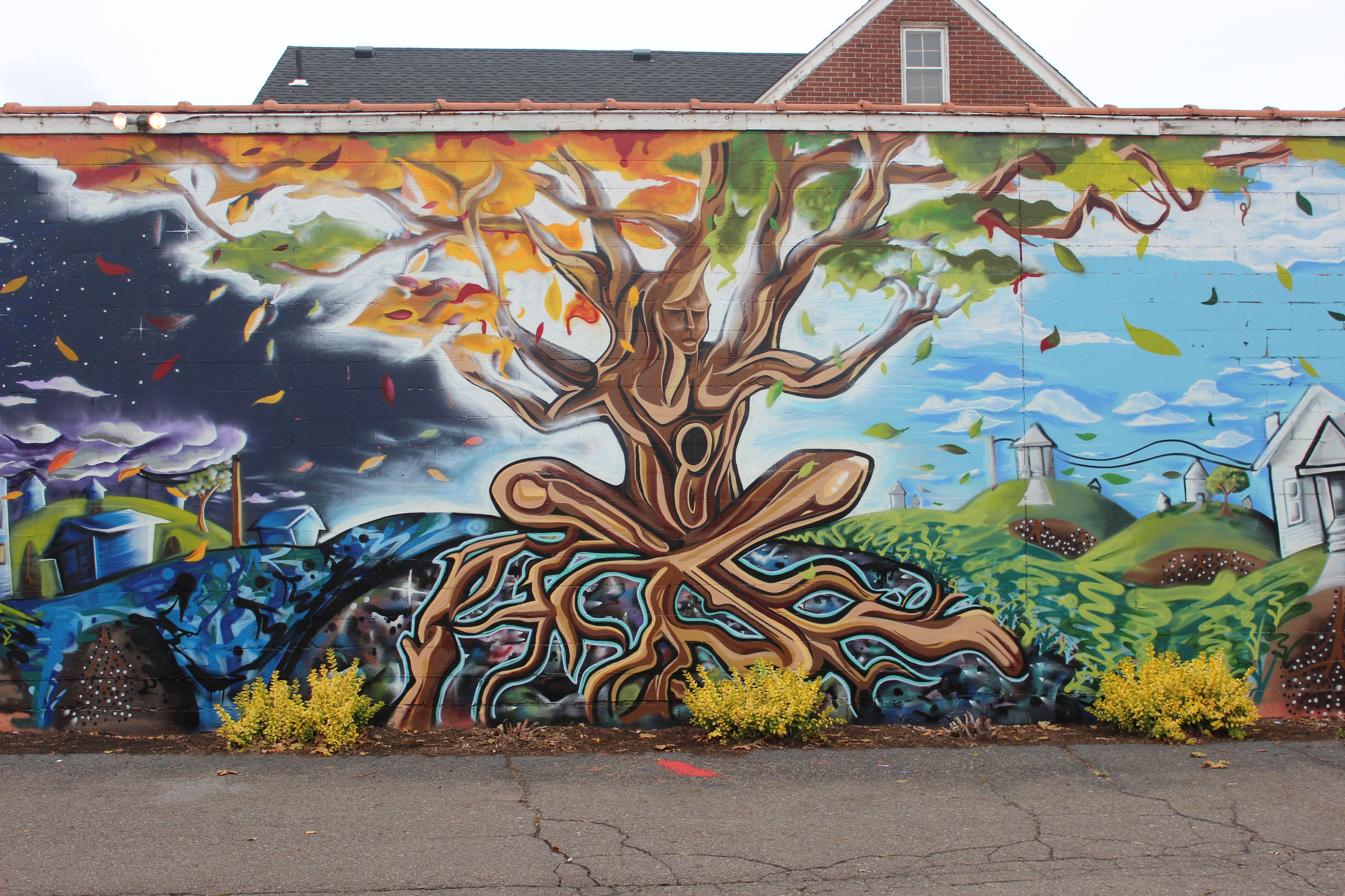 Amazing Streetart Southwest Detroit By Artist Freddy