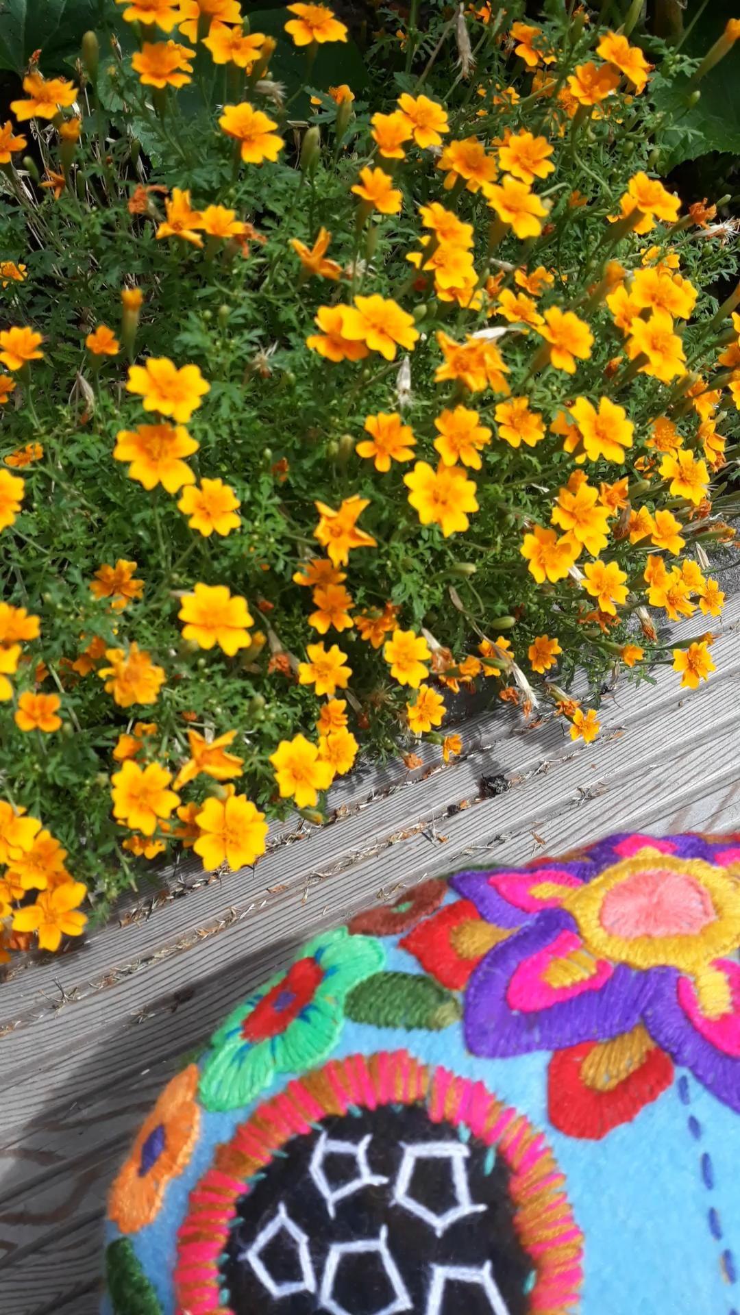 Das Leben feiern mit den schönsten mexikanischen Wohnideen: bunte, bestickte mexikanischen Kissen, Innendesign voller Farben, Mexican home, Tag der Toten, dia de muertos, day of the dead, Sculls with embroidery, Mexikanische Textilien, Mexikansiche Party dekoration, fiesta Deko, Deko Ideen Mexiko, Totenkopf Deko, Boho, Ethno, hippie, Frida Kahlo Style