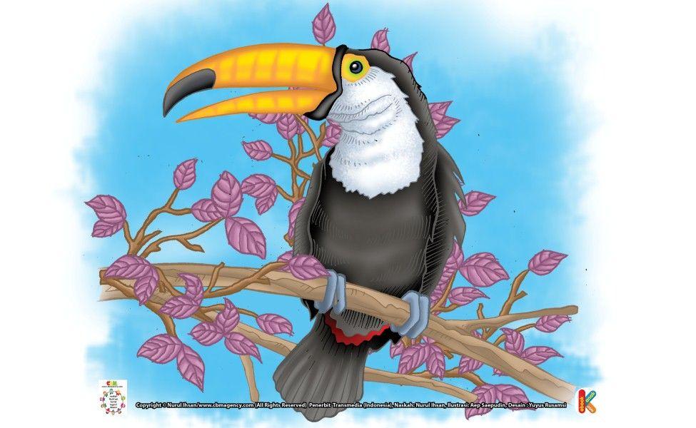 Tukan Burung Paling Ribut Suaranya Burung Suara